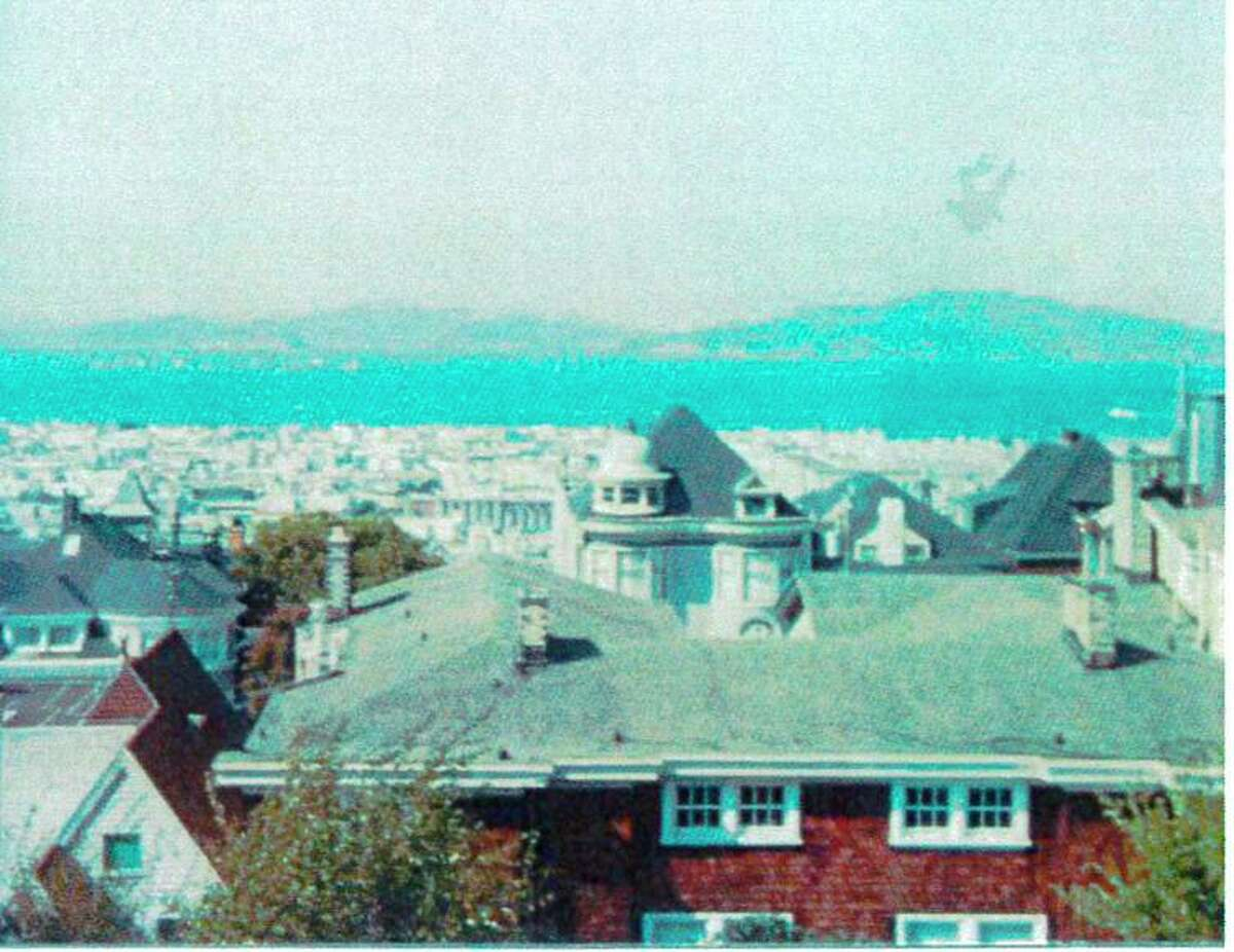 The view from the plaintiff's house in 1986 - the tree was planted in 1999.