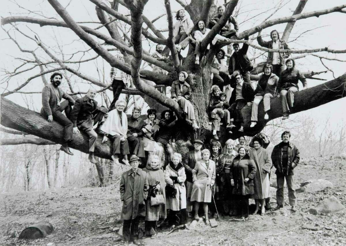 In the mid-1970s, members of the Ridgefield Guild of Artists took this photo in front of its Norway maple tree. A parking lot planned for the guild and its neighbors will leave the tree untouched.