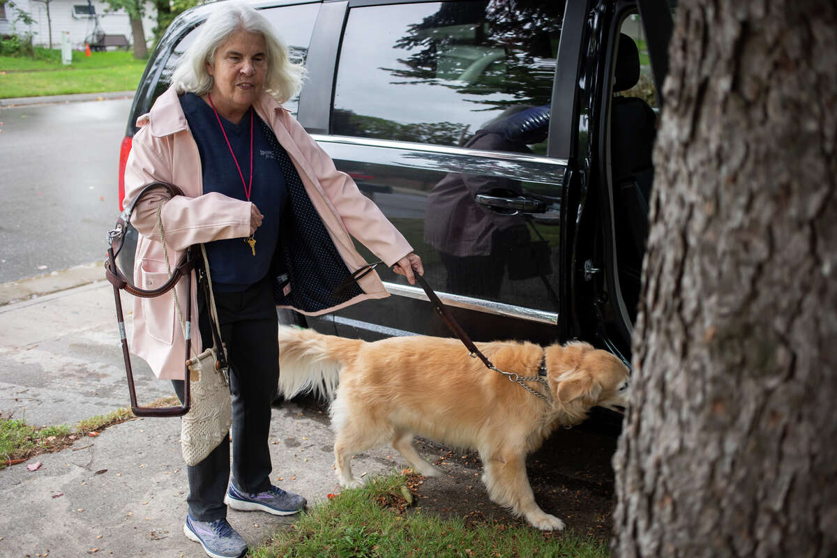 Cheryl Wade and her leader dog, Seline, get into the car while being picked up by a friend Wednesday, Sept. 22, 2021 at her home in Midland. (Katy Kildee/kkildee@mdn.net)