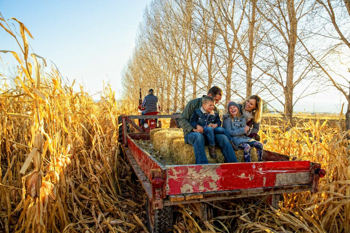 A family goes out for a hayride on a clear fall day.
