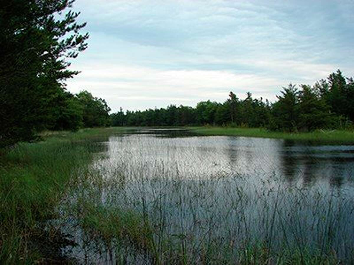 A scenic wetland view along Peterson Road. (Courtesy Photo/National Park Service)