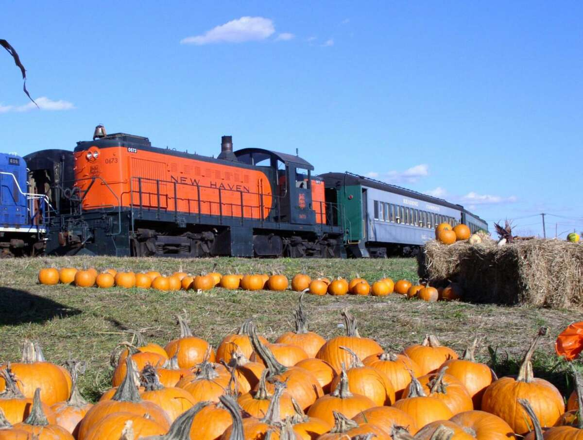 The pumpkin patch with train rides at the Danbury Railway Museum is back for four weekends, from 10 a.m. to 4 p.m., starting Saturday and Sunday, continuing Oct. 9,-10, Oct. 16-17, and Oct. 23-24, at the museum, rain, or shine. Trains will depart hourly beginning a half-hour after opening each day, and last train of day, at 3:30 p.m. Admission is $15 for people ages 2, and over. Children under 24 months are free. Each person, ages 2 through 12, can select a free pumpkin from the patch. Reservations can be made at the website for the event, at https://www.danburyrail.org/pumpkin. Children are encouraged to come in costume.