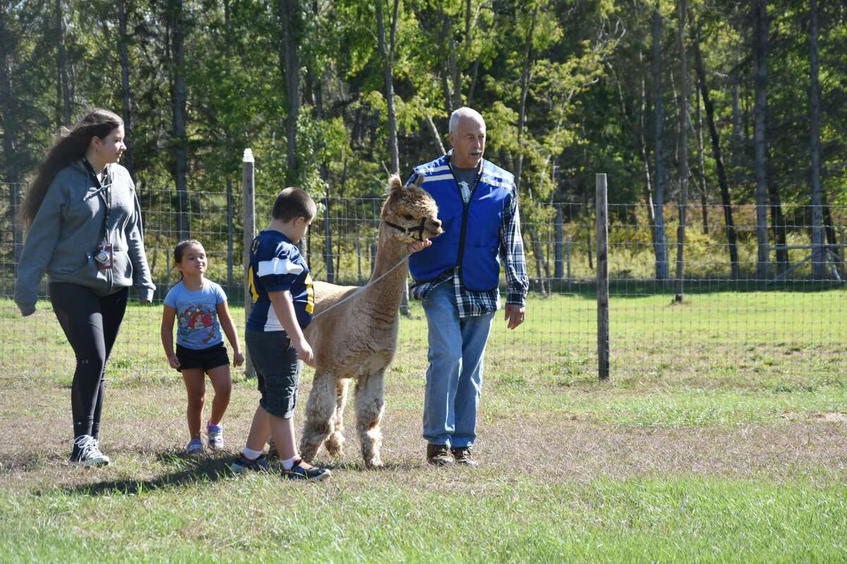 Visitors to the farm had a chance to wander the grounds, walk through a wooded fairy realm, walk with alpaca, receive face paintings and see how yarn is created.