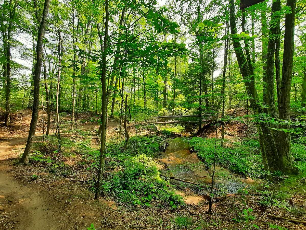 Once complete, the Dragon Trail will be roughly 47 miles in length forming a loop around Hardy Pond, in both Mecosta and Newaygo counties.