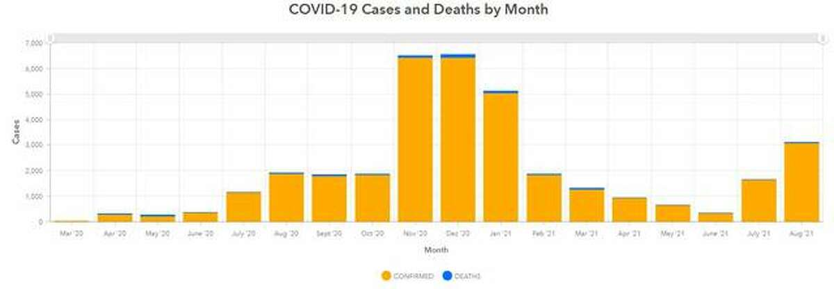 This Madison County Health Department graphic illustrates the number of COVID-19 cases and deaths by month since March 2020.