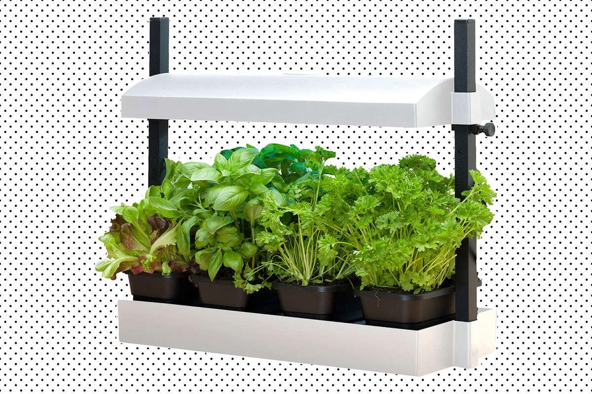 SunBlaster Micro Grow Light Garden, $81.89 at Amazon