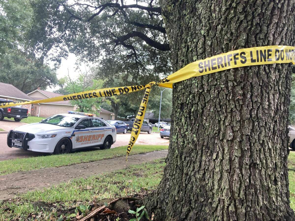 A 17-year-old girl's twin brother was charged with murder after she was fatally stabbed Wednesday morning in her Katy-area home, according to authorities.