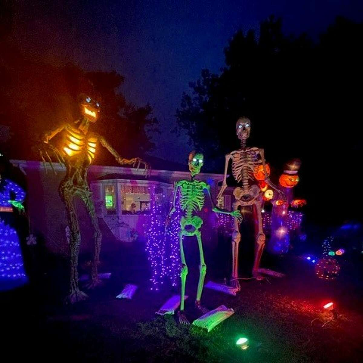 Pictured is a section of the Forshees' haunted forest walk.