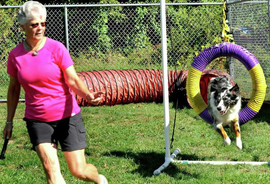 Wendy Richmond lets Topper, 2, an Australian sepherd, show his agility, during Animal Welfare Society's Dog Days of Summer, in New Milford, Saturday, Sept. 18, 2010. Photo: Michael Duffy / The News-Times