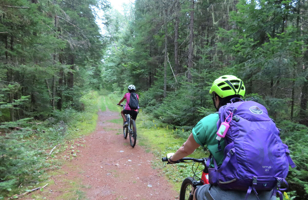 While not an official part of the Adirondack Rail Trail, the Bloomingdale Bog Trail will be a nice add-on.