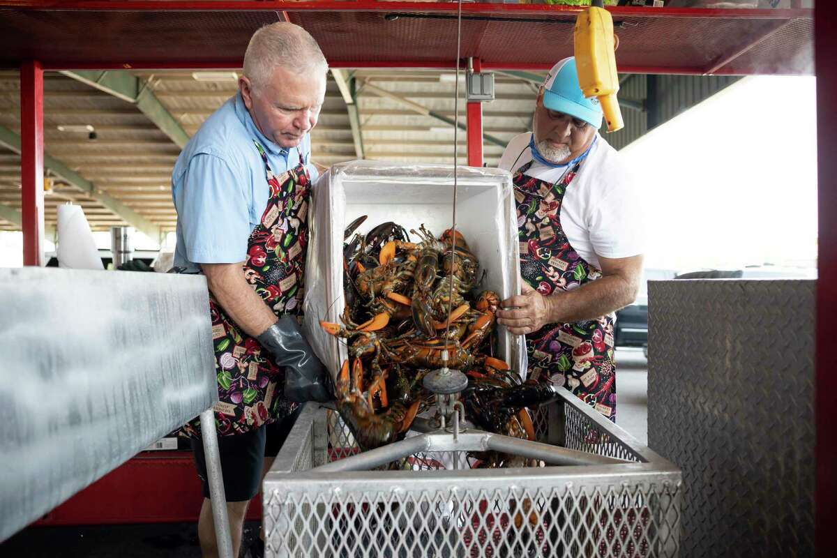Rick Carter, left and Scott Knee unload fresh lobster into a cooking cage in preparation for LobsterFest at the Montgomery County Fair Grounds, Thursday, Oct. 1, 2020, in Conroe. This year's event returns to an in-person dinner Thursday night.