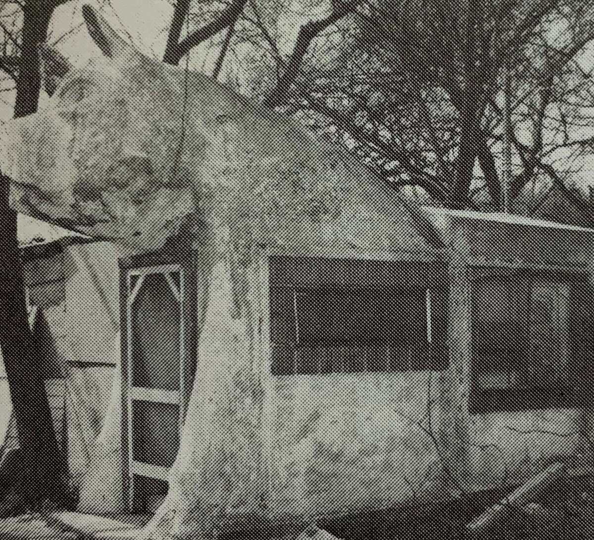 """A 1940s photo of the Big Pig structure in San Antonio, best known for its placement at the old Pig Stand diner on South Presa Street. The image appears in """"Built in the USA: American Buildings from Airports to Zoos,"""" published by the National Trust for Historic Preservation."""