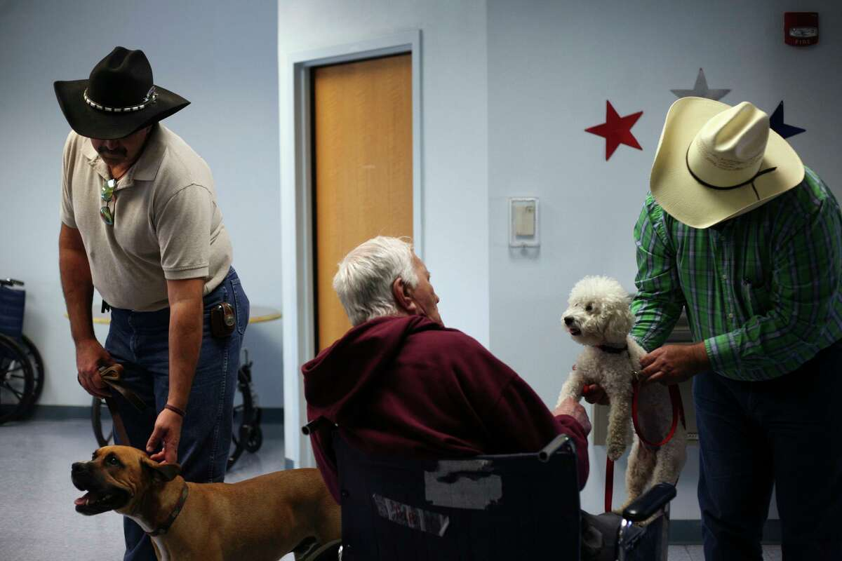 Ron Fischer of Cowboy Way Inc. Therapy/Learning Center, holds Rio, left, as Charles Ogburn, right, holds Mika for Veteran Nathaniel Pape, center, to pet as they visit veterans in the alzheimers unit at the Frank M. Tejeda Texas State Veterans Home in Floresville, TX. (Lisa Krantz/STAFF)