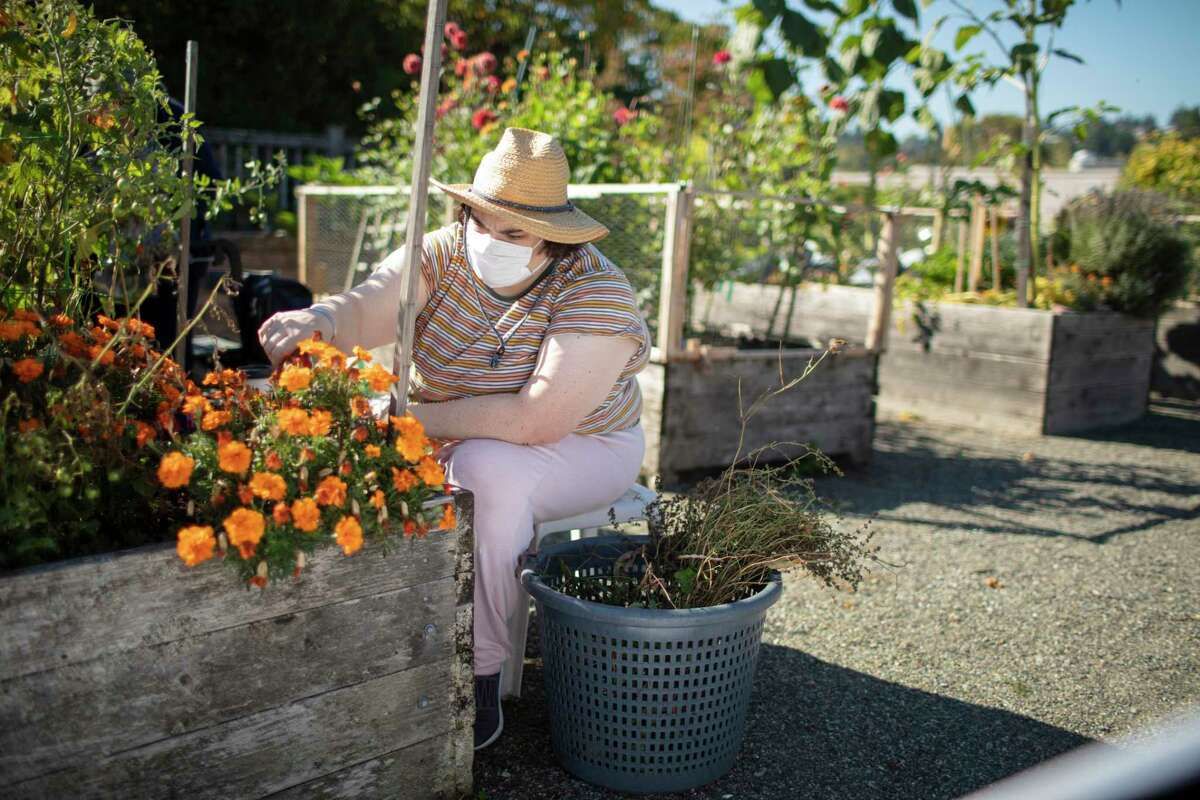 Sarah, the clinical trial patient, works in her garden.