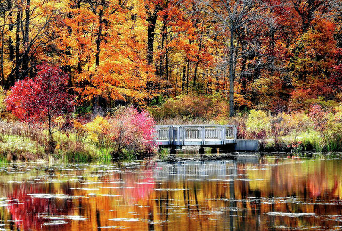 Autumn colors surround a lake in Lake County.