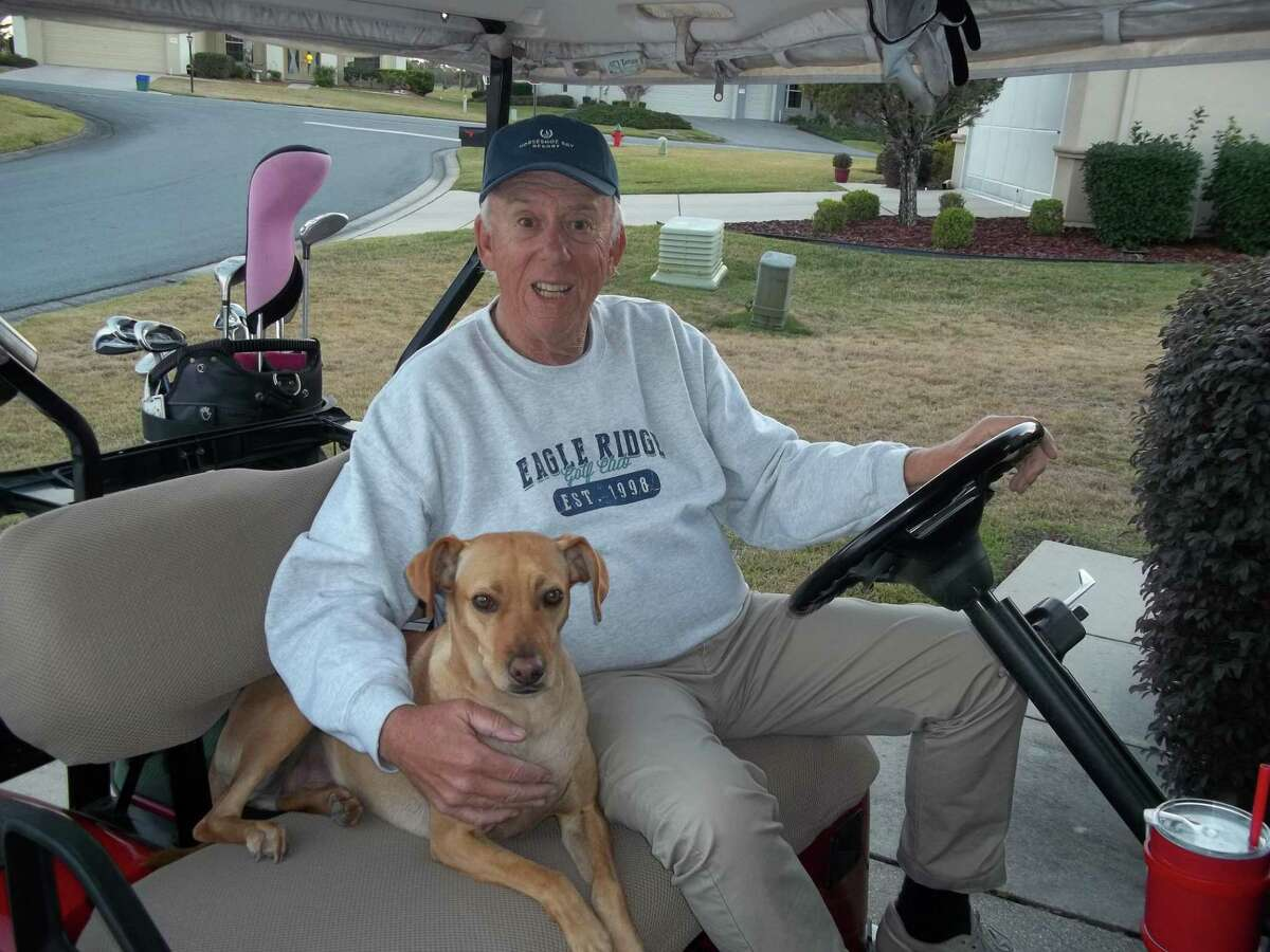 """Brian Doyle, 78, a native of Norwalk, shares memories of his time growing up in the Connecticut town in his new book, """"Summer Days Hot Nights."""" He currently lives in Florida, pictured here with his rescue dog, Sandi."""