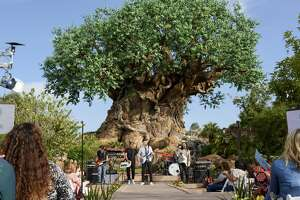 """FILE: In this handout photo provided by Disney Resorts, Singer/Songwriter Andy Grammer performs on ABC's """"The View"""" broadcast from Disney's Animal Kingdom on March 6, 2017."""