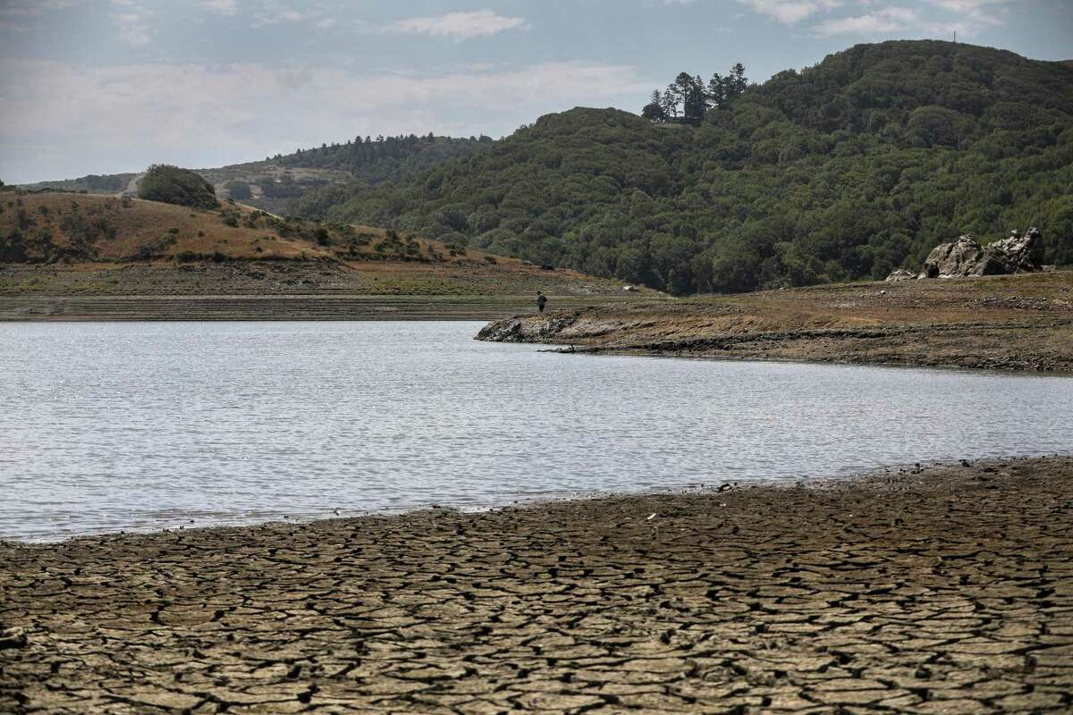 The lack of rainfall has put the artificial Nicasio Reservoir in Marin County, the area's largest, at its lowest point in many years as drought continues to grip much of the state.