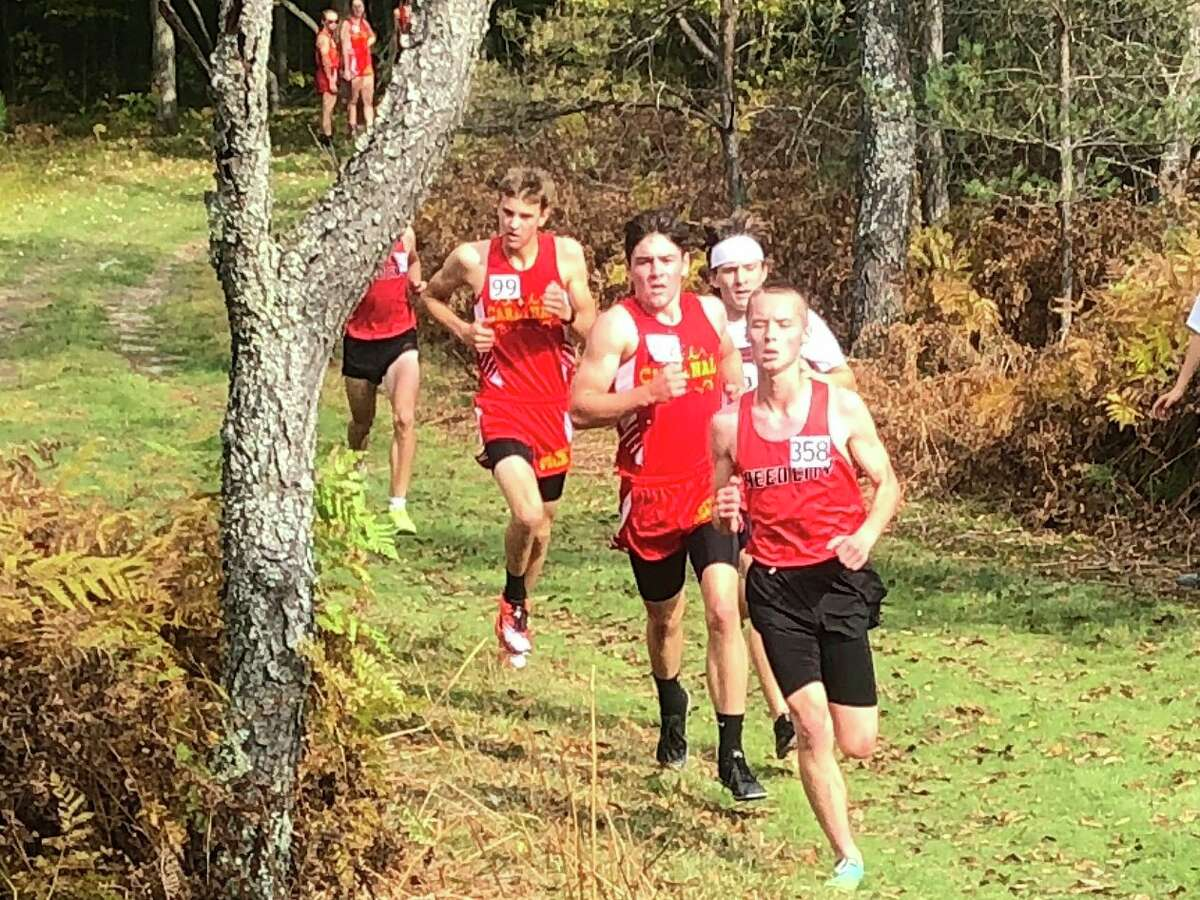 Reed City's Ryan Allen leads the pack during the Pine River Invitational. (Herald Reviewphoto/John Raffel)