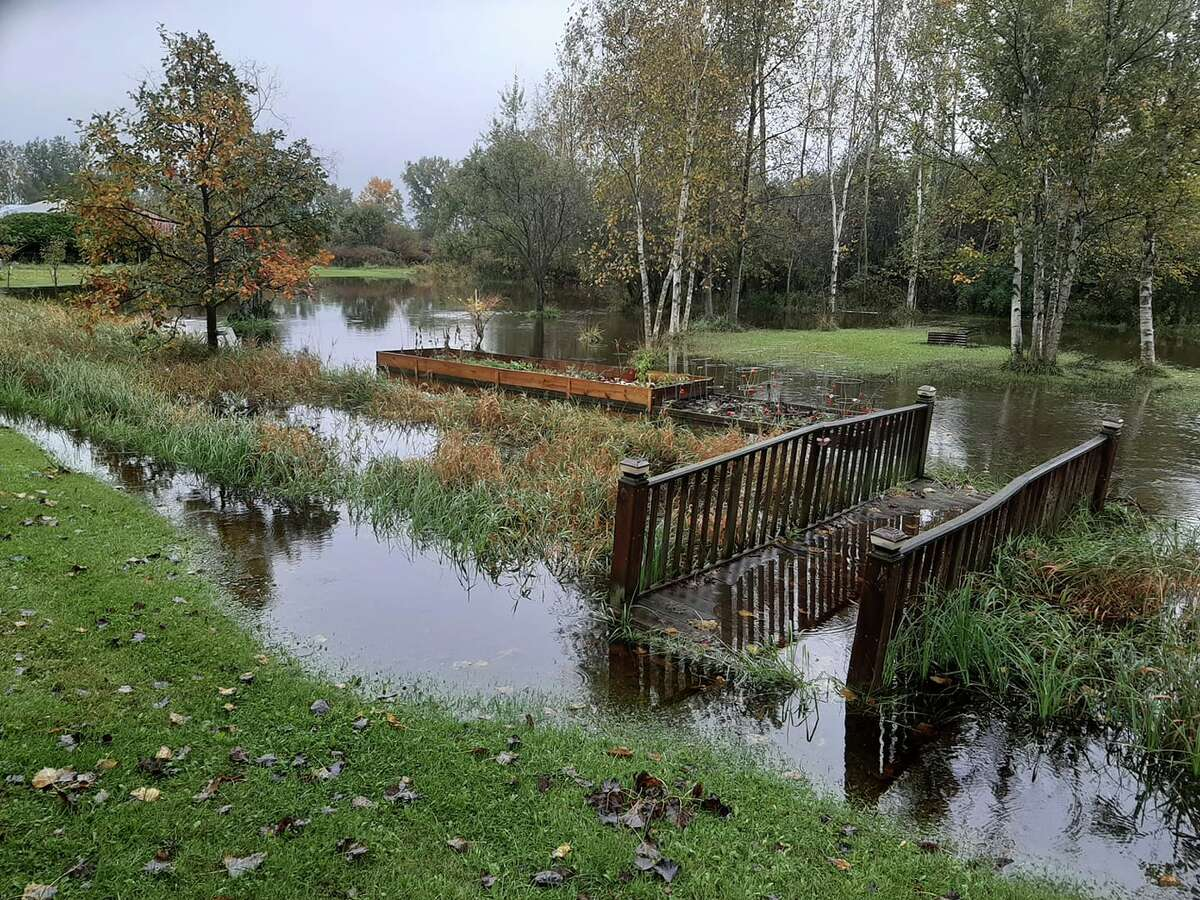 A saturated Midland residential property. Rainfall beginning Sunday, Oct. 3 is expected to carry out into this afternoon on Monday, Oct. 4.