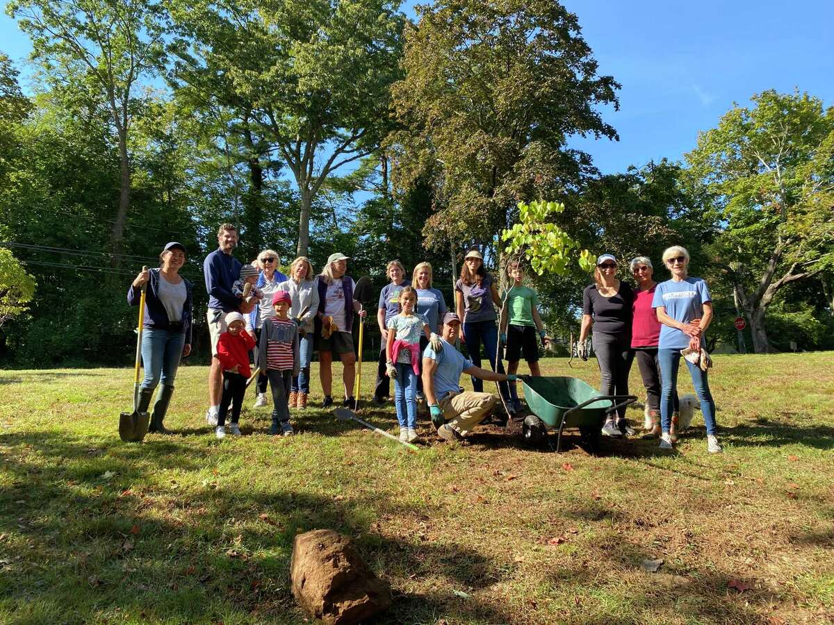 Volunteers helped the Darien Pollinator Pathway and the Department of Public Works plant about 30 native trees and shrubs in the town hall area on Oct. 2, 2021 in Darien.