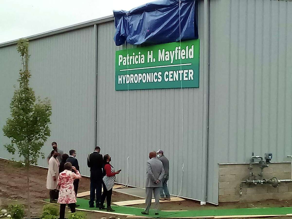 New Opportunities opened the Patricia H. Mayfield Hydroponic Center, named after the agency's late board chairman and one of its biggest supporters, Tuesday. The center is at Technology Park Drive and is intended to provide fresh food and employment in Torrington. Mayfield's family members unveiled the sign on the center's building.