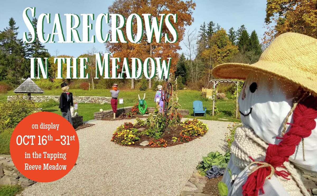 The Litchfield Historical Society is excited to announce the return of its second annual Scarecrows in the Meadows, a community event to celebrate the end of the harvest season. The scarecrows will be on display in the Tapping Reeve Meadow (82 South Street, Litchfield, CT) from October 16th - October 31st.