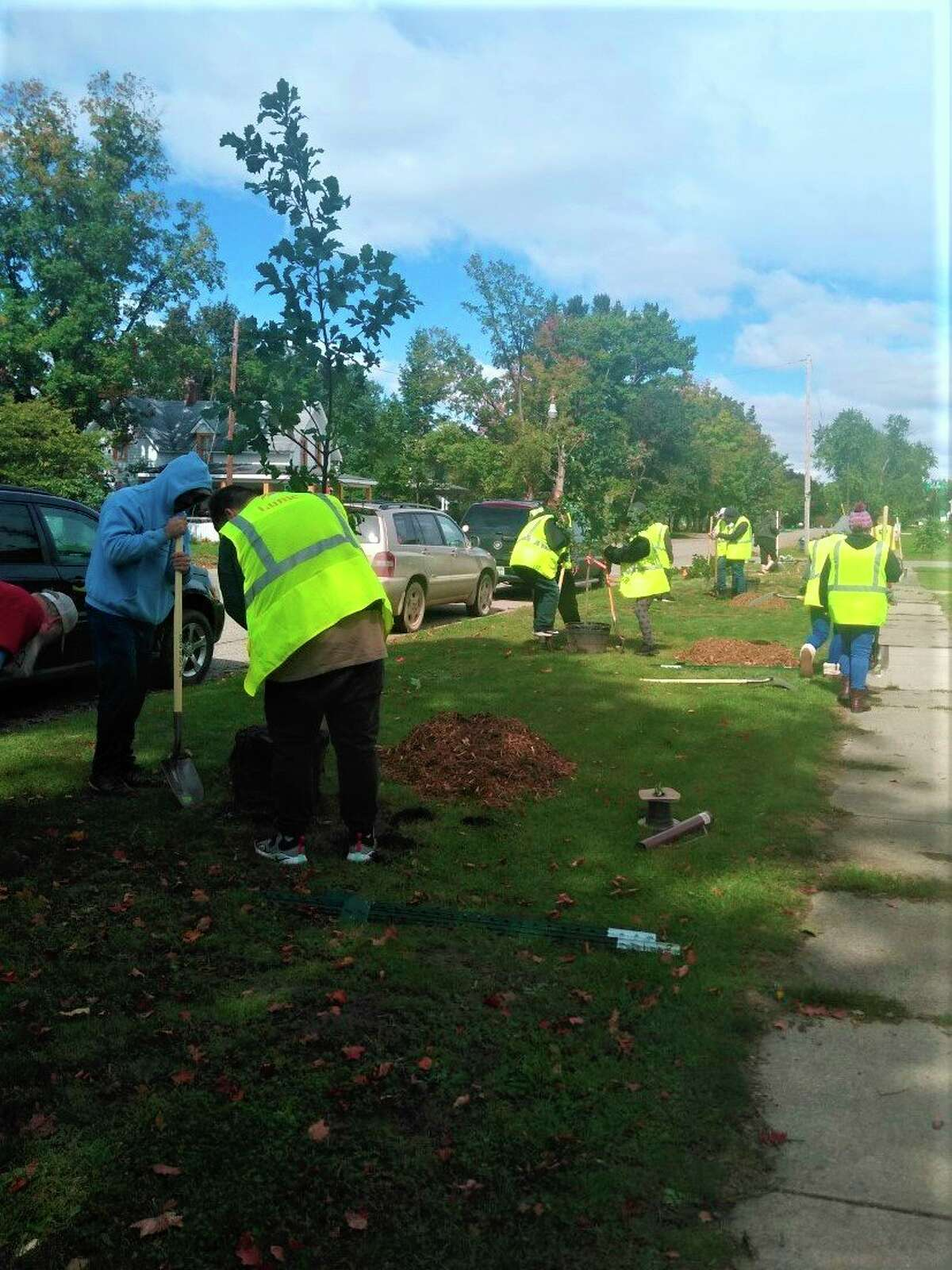 Volunteers from Lume Cannabis Company helped plant trees along Main Street in Evart after several mature trees were destroyed by the recent storms. (Submitted photo)