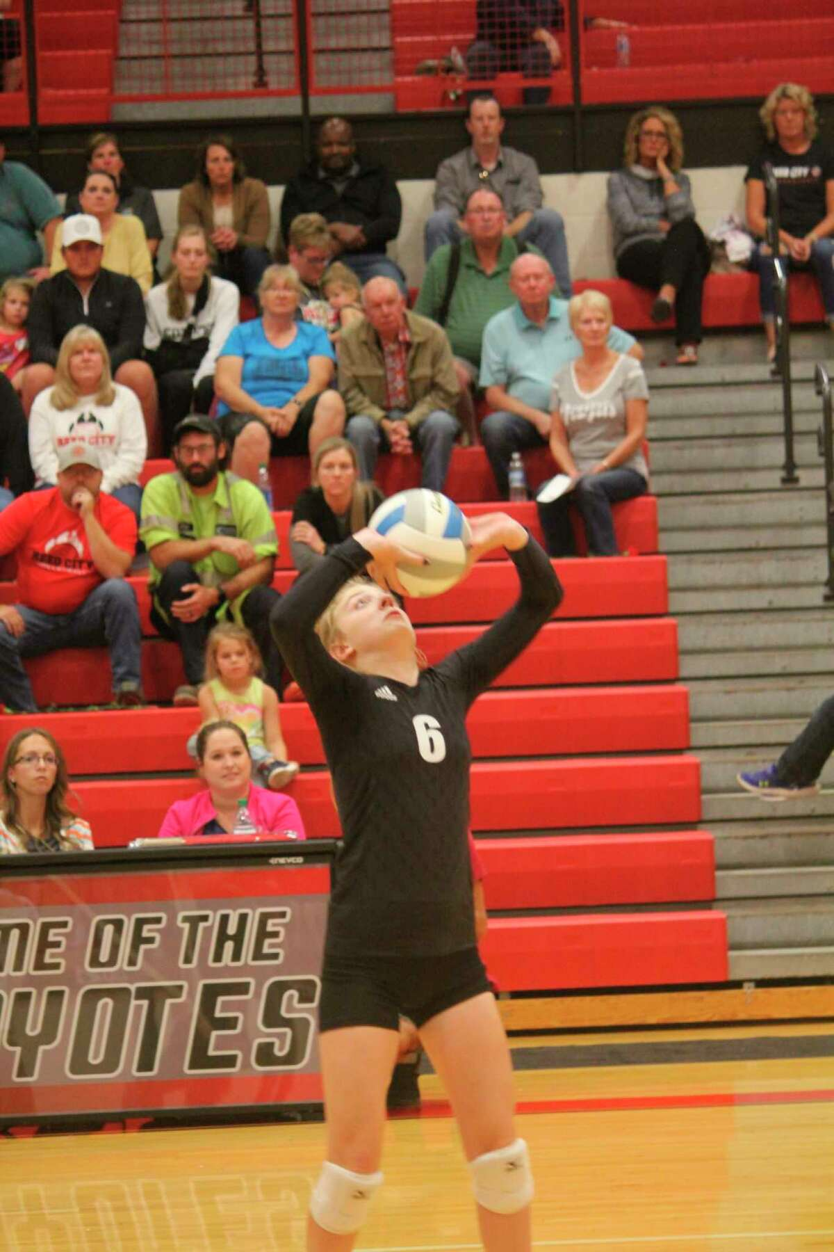 Reed City setter Rachel Van Syckle sets the ball against Big Rapids in volleyball action last week. (Herald Review/John Raffel)
