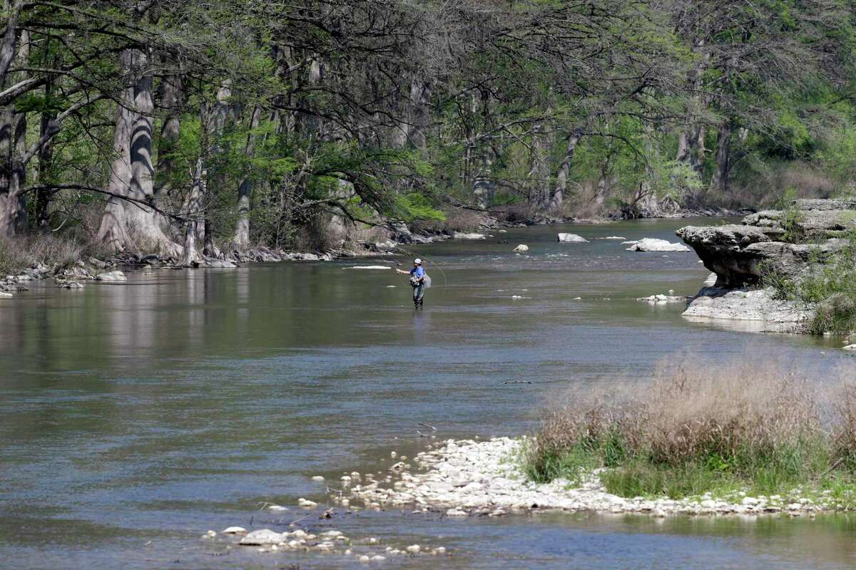 The Guadalupe River Basin is home to three types of freshwater mussels that the U.S. Fish and Wildlife Service has proposed listing as endangered species.