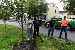 Watervliet tree committee member Bill Fahr, left, Mayor Charles Patricelli, Dan McGrath committee chairman and arborist, and Paul Fahr tree committee secretary, right, stand near some of the new trees planted by the city on 16th Street on Wednesday, Oct. 6, 2021, in Watervliet, N.Y. The city is conducting a city tree planting program.
