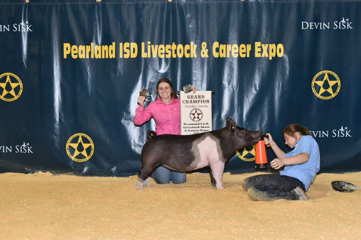 Pearland High School's Carlie Guzzetta shows her Grand Champion swine at the 10th annual Pearland Independent School District Livestock Show & Career Expo.