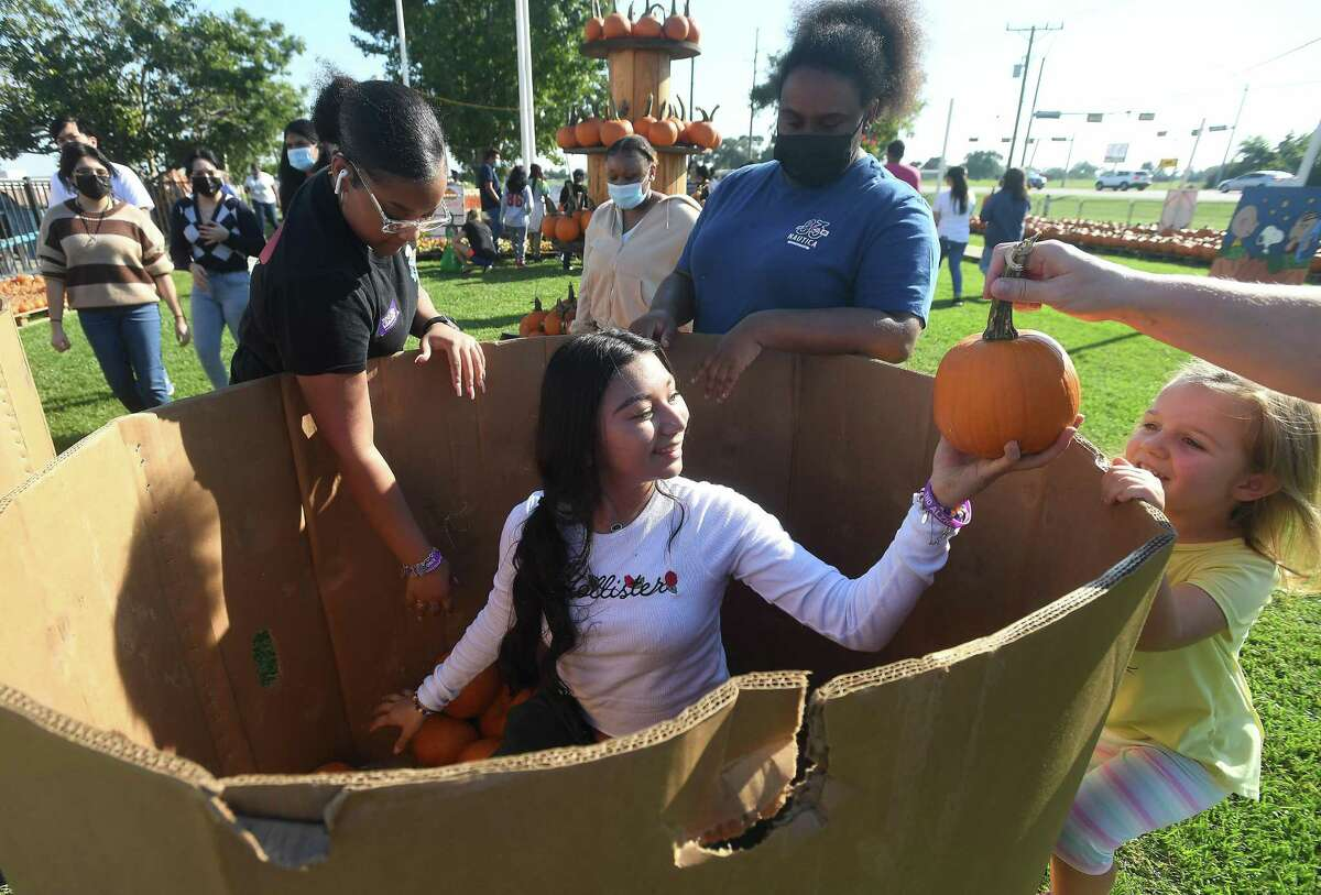 Kaely Amador jumps into a box filled with small pumpkins as she and volunteers help with the big pumpkin unload at Wesley United Methodist Church's pumpkin patch Thursday. The original Monday patch opening was put on hold after Sunday's shipment was delayed. Photo made Thursday, October 7, 2021 Kim Brent/The Enterprise