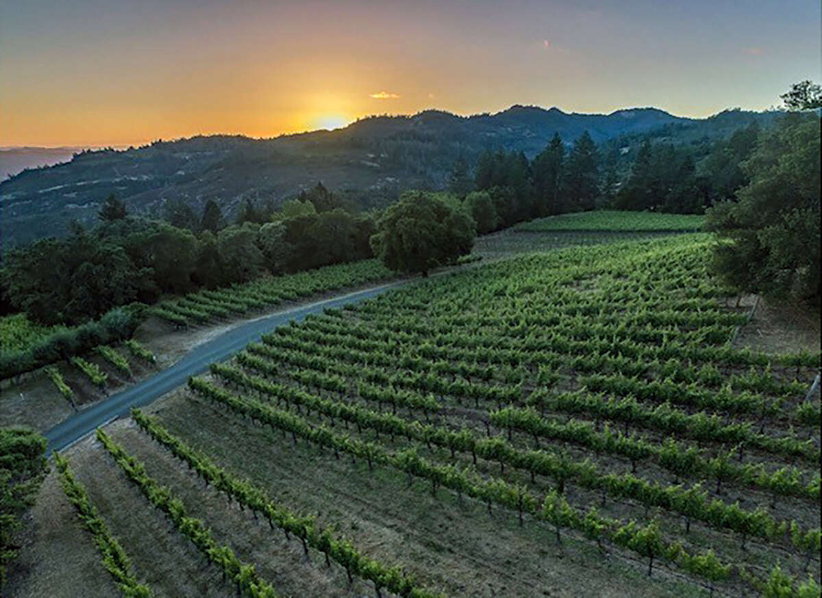 Lail Vineyards Mole Hill Estate in California's Napa Valley is carbon farmed.