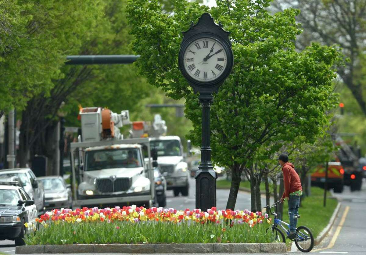 """A bike rider crosses Main Street, by White and Elm Streets, behind tulips planted by a partnership between City Center Danbury, Danbury Garden Club and the Danbury Museum & Historical Society. Called the """"Tulip Program"""" 2,000 bulbs were planted by Kolwicz Landscaping at the intersections along Main Street in downtown Danbury, Conn. Tuesday, May 2, 2017."""