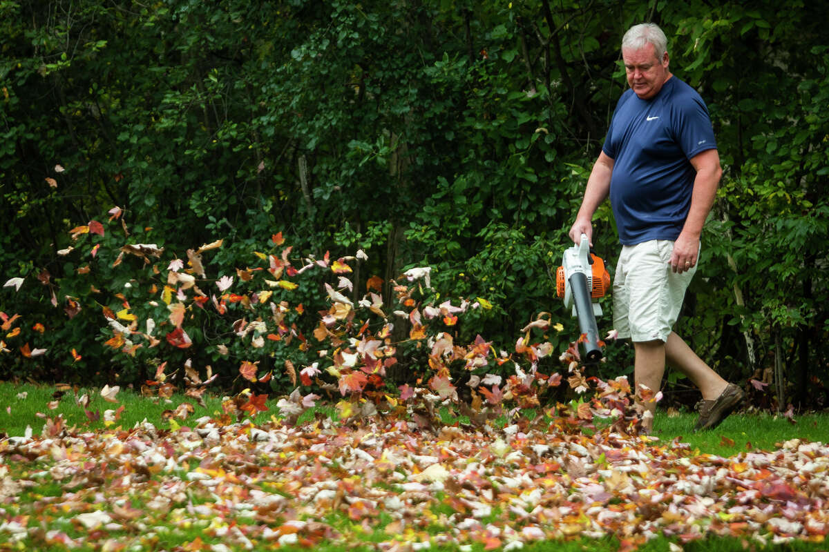 Craig Baker of Midland uses a leafblower to clear his lawn as leaves begin to show their fall colors Monday, Oct. 11, 2021. (Katy Kildee/kkildee@mdn.net)