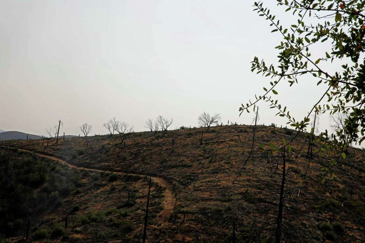 """A burn scar can be seen from Leslie Kaulum's property on Friday, August 13, 2021, in Mountain Ranch, Calif. Six years after the 2015 Butte Fire, Kaulum, 64, is still waiting to be paid in full, thanks to the bankruptcy of PG&E, which caused the fire. She and her husband stand to be paid from the independent PG&E Fire Victim Trust that was set up last year, but it's a slow process. """"It's one of the clubs no one wants to be a part of,"""" Kaulum said. """"And now we're getting to be a big club, just in the state of California."""""""