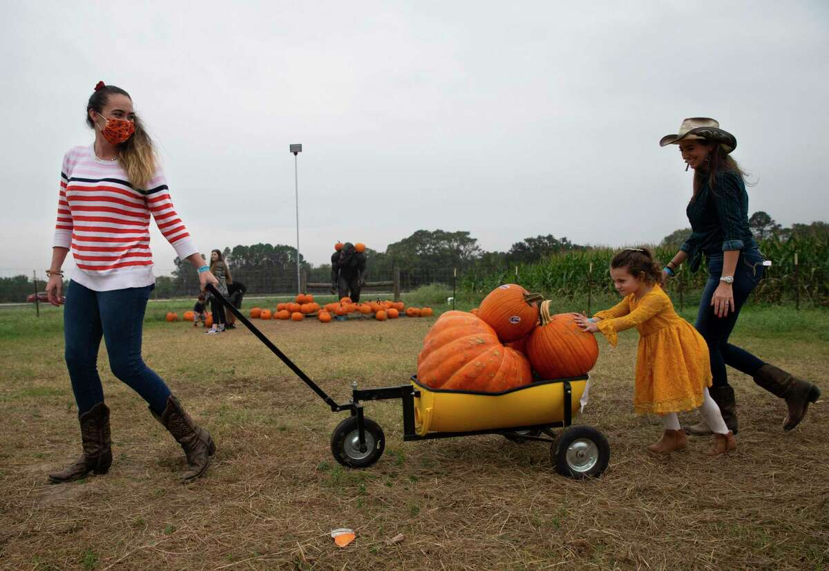 Avery Morrison, 4, helps her mother Devon Morrison, both of League City, with the wagon full of pumpkins they picked while family friend Reagan Armbruster, of Stafford, watches on Tuesday, Oct. 27, 2020, at Froberg's Farm in Alvin.