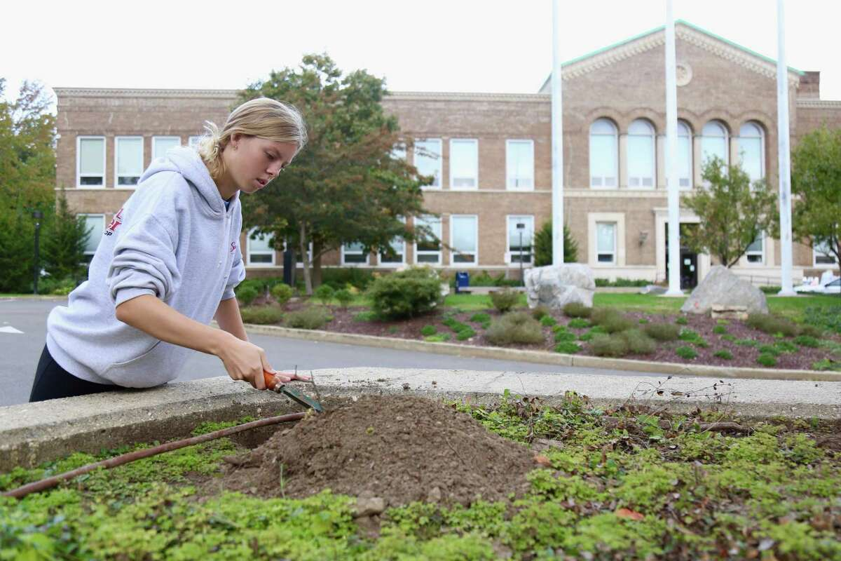 Grace Hanley, 16, of Darien, plants tulip bulbs as part of a student-led effort to raise awareness about mental health issues and offer support.