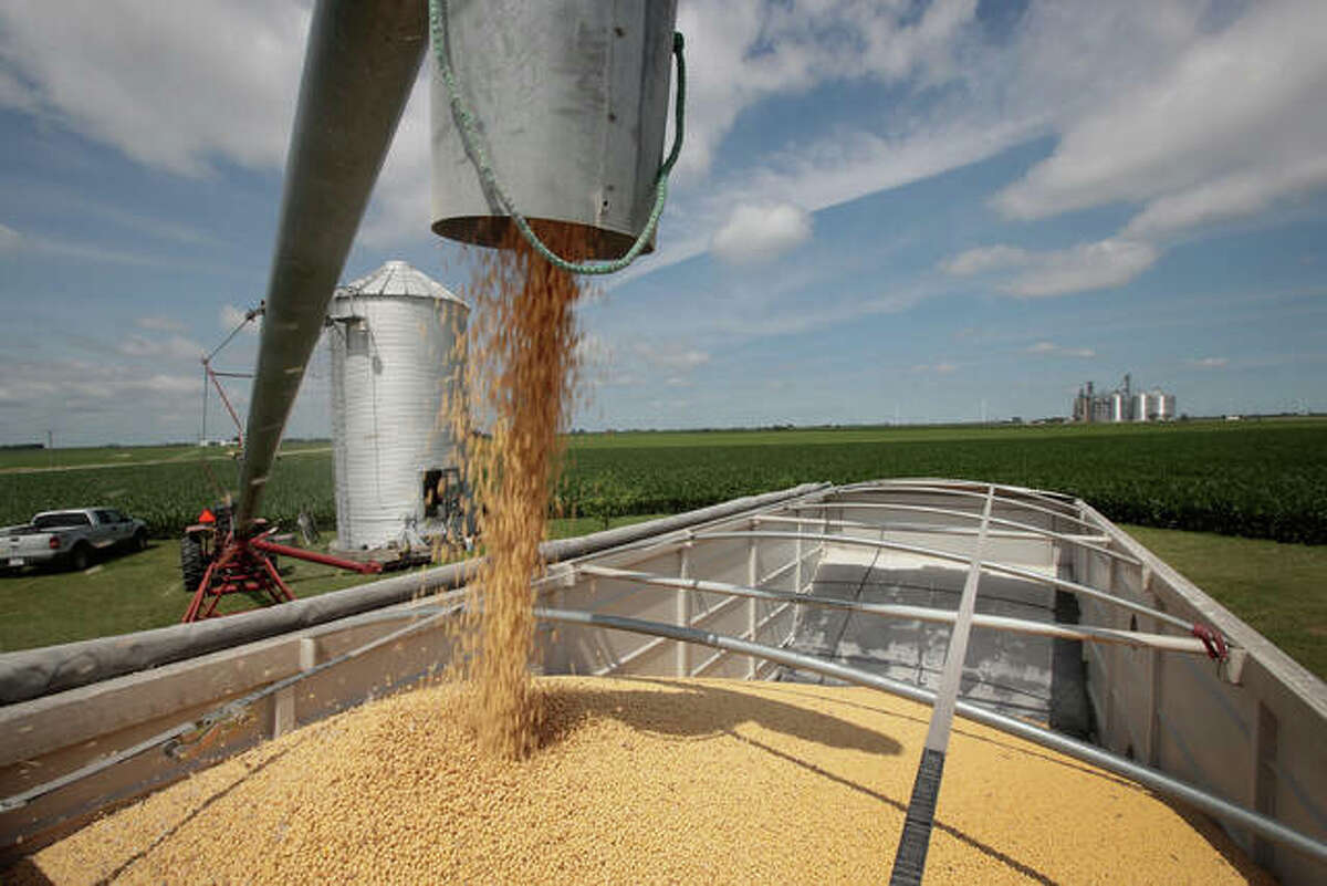 The U.S. Department of Agricuture on Tuesday projected this year's Illinois total corn production at 2.27 billion bushels, up 7 percent from last year. It forecast this year's soybean production in Illinois at 675 million bushels, up 10 percent from 2020.