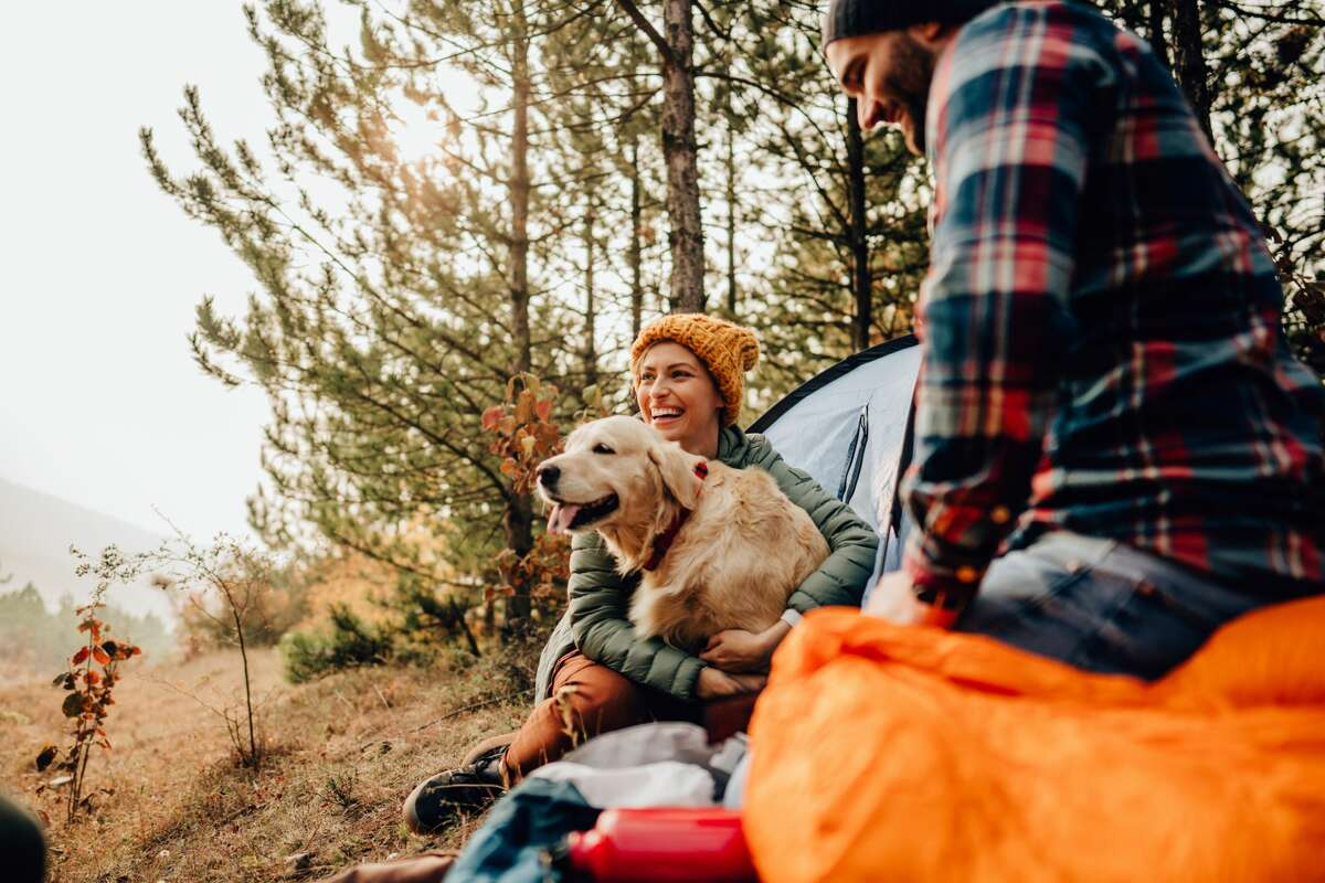 Blaze orange isn't just for hunters. Hikers, bikers and pets should also wear the bright color when out in the woods during hunting season to improve visibility and safety.