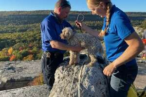 Liza survived five days underground with no food or water but was OK. Rescuers think she licked moisture off the walls for fluids.