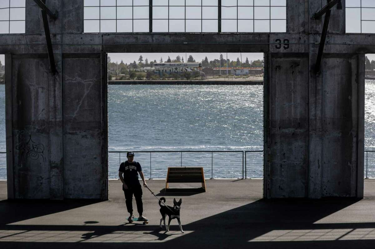 Vico Lai and his dog Hanji skate on the plaza at Township Commons in Oakland, Calif. on Monday, Oct. 11, 2021. There is a proposal to add a marina that would have slips lining the entire public space.