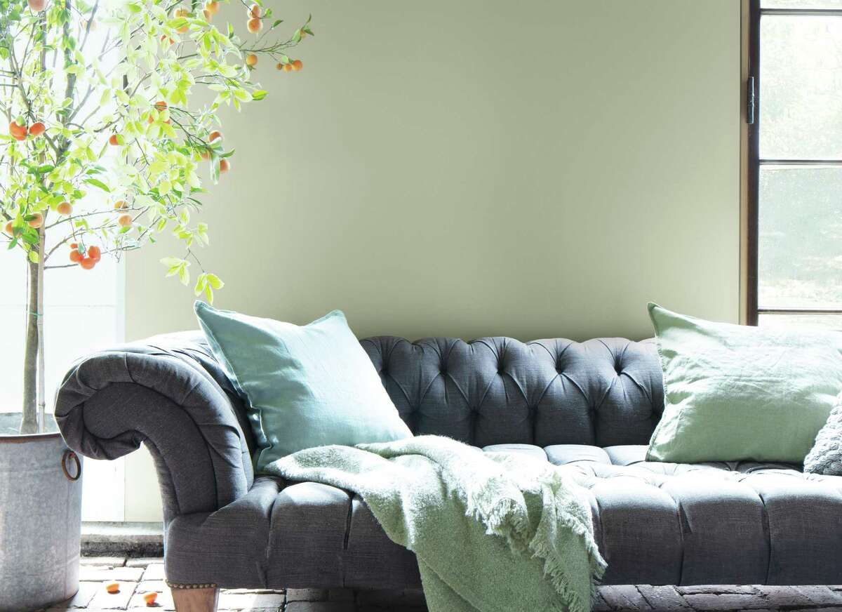 """Benjamin Moore has chosen """"October Mist,"""" a dusty sage green, as its 2022 Color of the Year."""