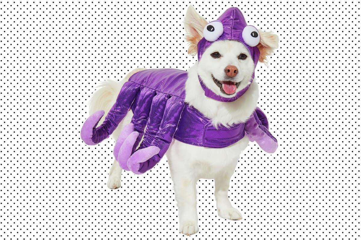 purple octopus costume from Frisco