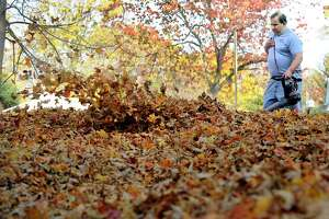 Francis Scapeccia uses a leaf blower to clear the leaves in his yard on Westville Avenue Extension in Danbury Thursday afternoon, Oct. 20, 2016.