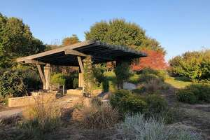 There will be a Fall Nature Walk at The Gardens at Southern Illinois University Edwardsville starting a 5 p.m. on Tuesday, Oct. 19