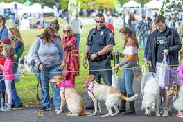 The Westport Dog Festival was canceled twice due to the COVID-19 pandemic, and was supposed to make its grand return Oct. 10. However, inclement weather postponed the event, but it finally went off on Sunday.