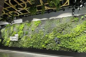 The arena also features a plant wall similar to the one at the Amazon Spheres. There are over 12,500 plants and trees on the arena site.