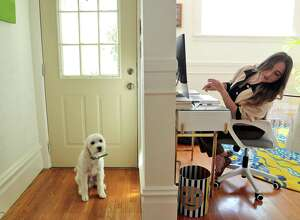 Rira Raisi checks on her dog Pablo while working from home during the  pandemic in San Francisco.